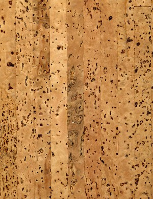 Eco friendly flooring materials cork bamboo hardwood for Linoleum cork