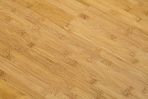 Bamboo flooring sample